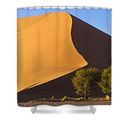 Sand Dune, Namibia, Africa Shower Curtain