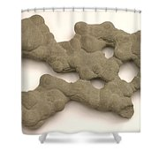 Sandstone Conglomerate Shower Curtain