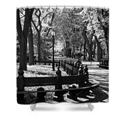 Scenes From Central Park Shower Curtain