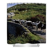 Slea Head, Dingle Peninsula, Co Kerry Shower Curtain