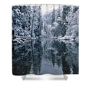 Snow-covered Trees Reflected Shower Curtain