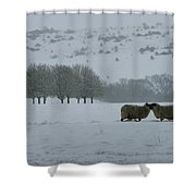 Snowy Hello Shower Curtain