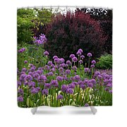 Springcolors Shower Curtain