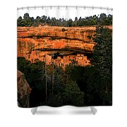 Spruce Tree House Shower Curtain