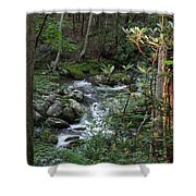 Stream Shower Curtain