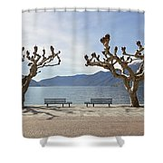 sycamore trees in Ascona - Ticino Shower Curtain
