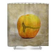 Textured Apple Shower Curtain