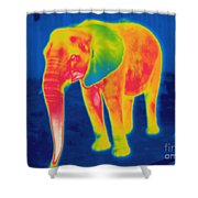 Thermogram Of An Elephant Shower Curtain