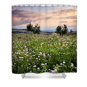 Tuscany Shower Curtain