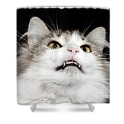 Vampire Cat Shower Curtain