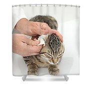 Vet And Kitten Shower Curtain