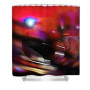 Waltzer Shower Curtain