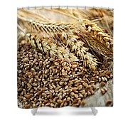 Wheat Ears And Grain Shower Curtain