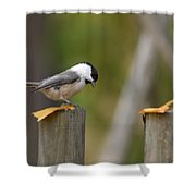 Willow Tit Shower Curtain