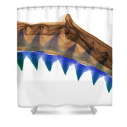 X-ray Of Shark Jaws Shower Curtain