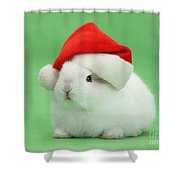 Young White Rabbit Wearing A Christmas Shower Curtain