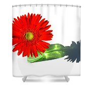2002a-1 Shower Curtain