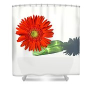 2002a1 Shower Curtain