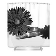 2002a2-002 Shower Curtain