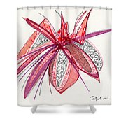 2012 Drawing #4 Shower Curtain