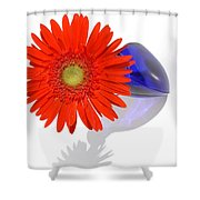 2028a1-1 Shower Curtain