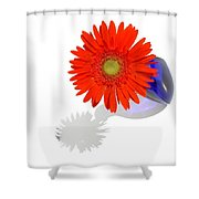 2029a3 Shower Curtain