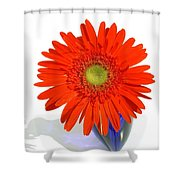 2035a1c Shower Curtain