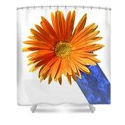 2094a Shower Curtain