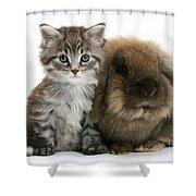 Kitten And Rabbit Shower Curtain