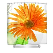 2107c-001 Shower Curtain