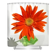 2116a Shower Curtain