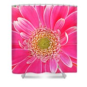 2159 Shower Curtain
