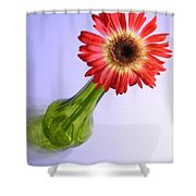 2200c2-002 Shower Curtain