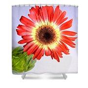 2205c-001 Shower Curtain