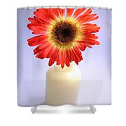2216c1-003 Shower Curtain