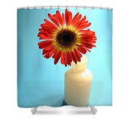 2230c1 Shower Curtain
