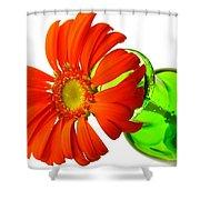 2243c1-001 Shower Curtain