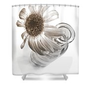 2259c-003 Shower Curtain