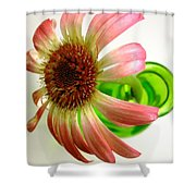 2265c-001 Shower Curtain