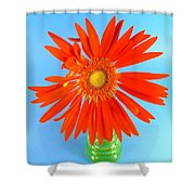 2279c2-001 Shower Curtain