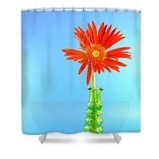 2286c1 Shower Curtain