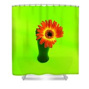 2316c Shower Curtain