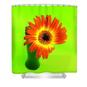 2317c Shower Curtain