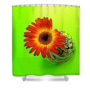 2327c1 Shower Curtain
