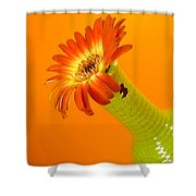 2350c2 Shower Curtain