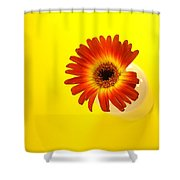 2357c Shower Curtain
