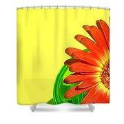 2510c-003 Shower Curtain