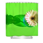 2584c1 Shower Curtain