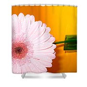 2841 Shower Curtain