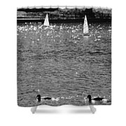2boats2ducks In Black And White Shower Curtain